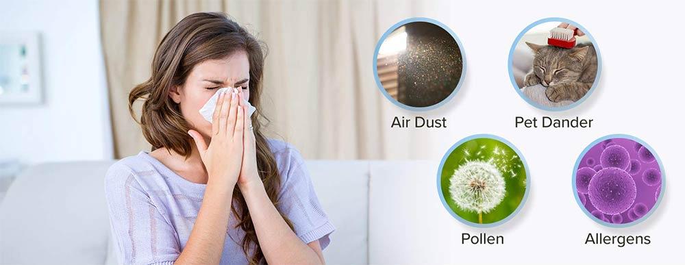 purificatore di aria per le allergie